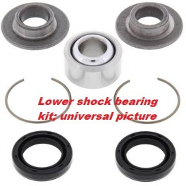 YZ lower rear shock bearing